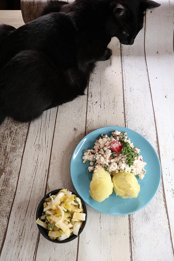 Heute habe ich ein schnell zubereitetes Mittagessen oder Pausesnack für euch: Hüttenkäse-Radieschen-Dip. Er ist histamin- und fructosearm.